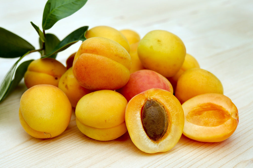 apricot seed in cough-ease herbal supplement