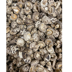 Premium White Flower Shiitake Mushrooms - 1 Pound - Product of Japan
