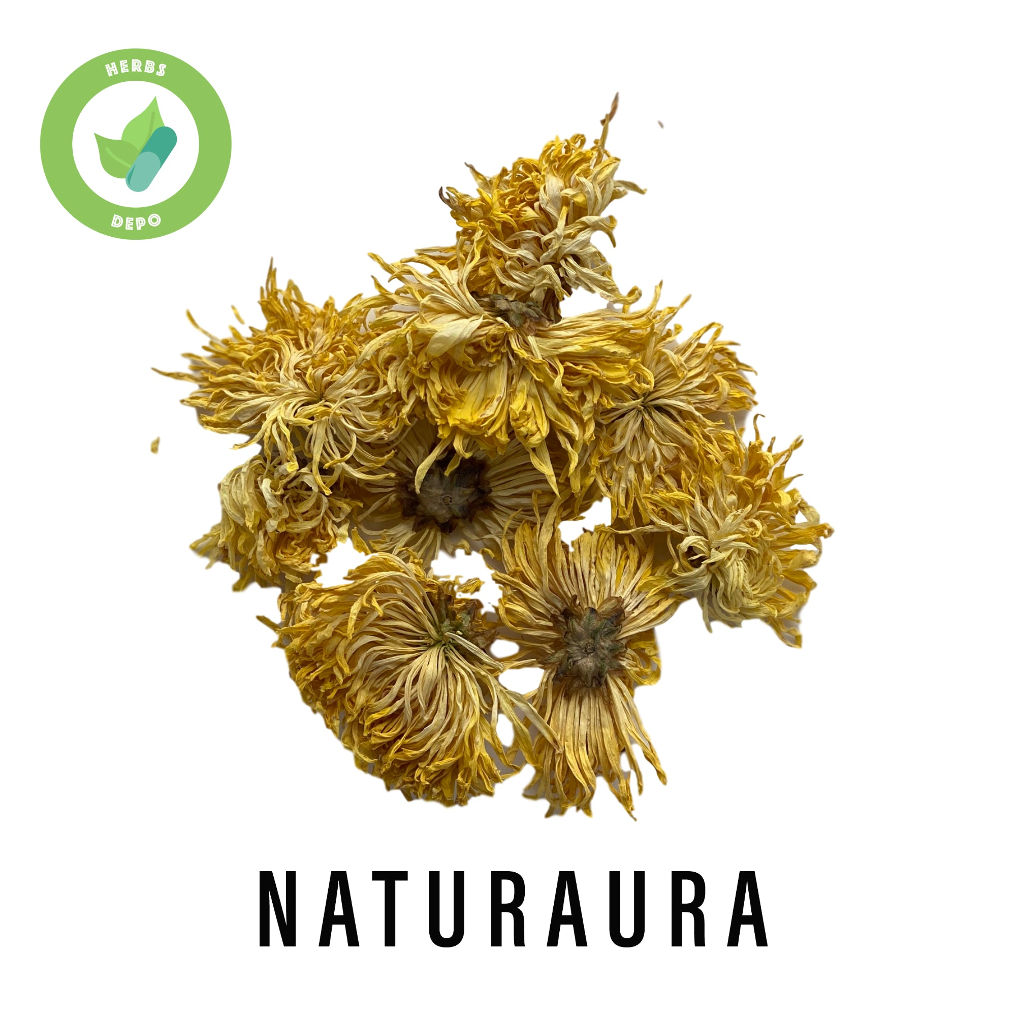 NATURAURA - PREMIUM  DRIED GOLDEN CHRYSANTHEMUM 金絲皇菊 - CHRYSANTHEMUM MORIFOLIUM - Herbs Depo