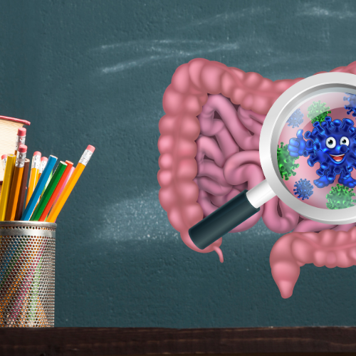 Back to school: Introducing GOOD bacteria into your child's diet