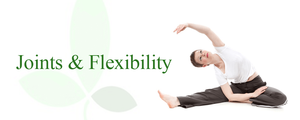 Joints & Flexibility Supplements