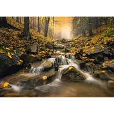 Fabulous Brook Jigsaw Puzzle 1000 pc