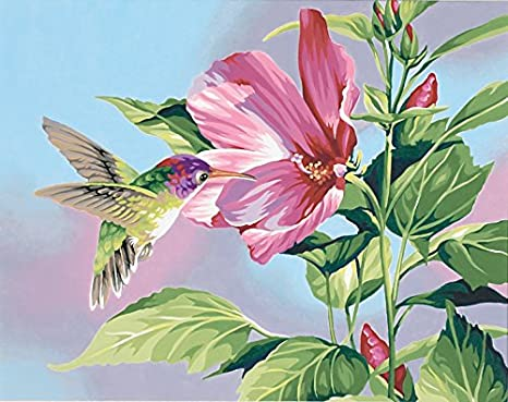 Paintworks® Hibiscus & Hummingbird Paint-by-Number Kit