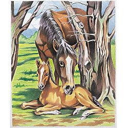 Color by Numbers Horse & Foal