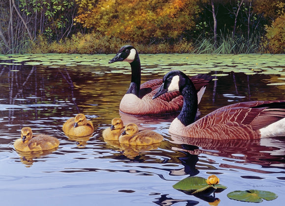Platts Pond 1000Pc Puzzle