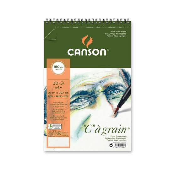 CANSON C A' GRAIN 180 GSM ALBUM OF 30 FINE GRAIN SHEETS