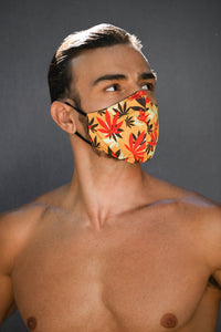 CALI DREAMING Reversible MASK only