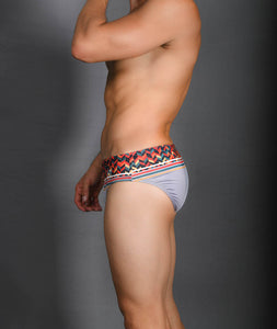 Brief Silver / Plateado