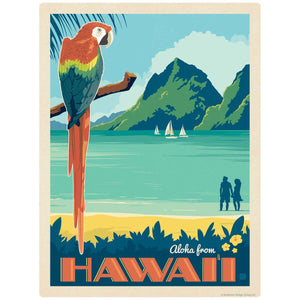Aloha From Hawaii Parrot Decal