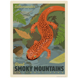Red Salamander Decal Smoky Mtns National Park