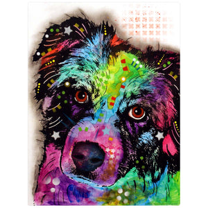 Aussie Australian Shepherd Curious Dog Decal