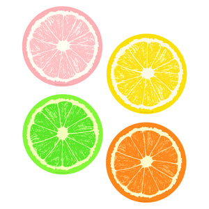 Fruit Slices Vinyl Sticker Set of 4