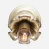 Bloom Flush Mount Wall Sconce - Hardwire - Raw Brass Patina