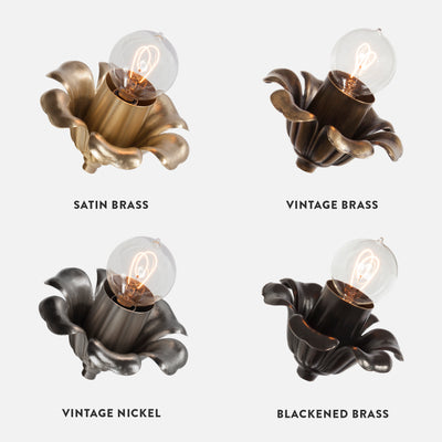Bloom Wall Sconce Collection Patina Options