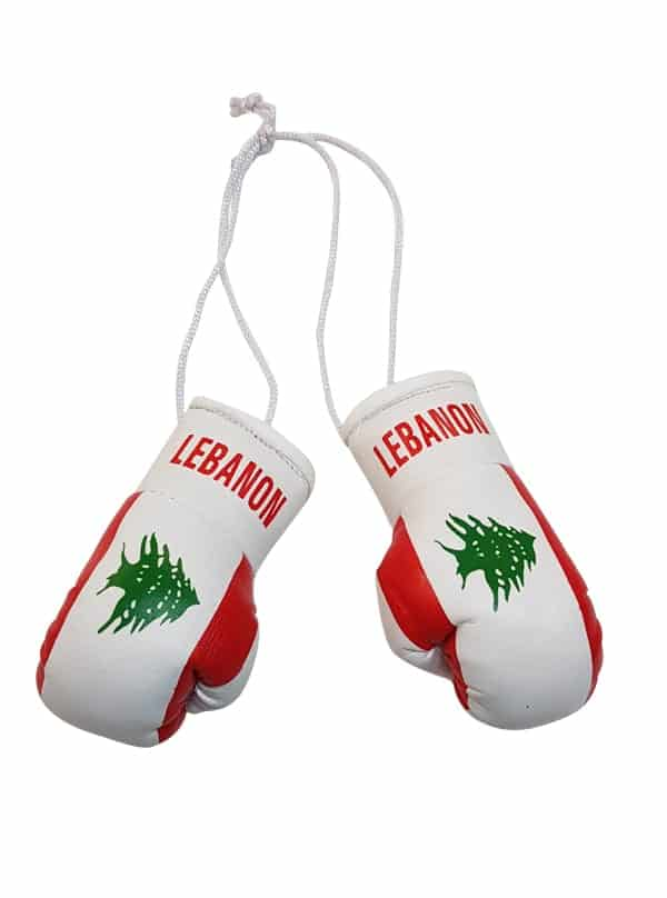 Lebanon Mini Boxing Gloves