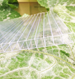 10mm Polycarbonate- Per Sqm - Sproutwell Greenhouses