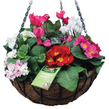 Wire Hanging Baskets