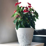 Minho Decorative Pot