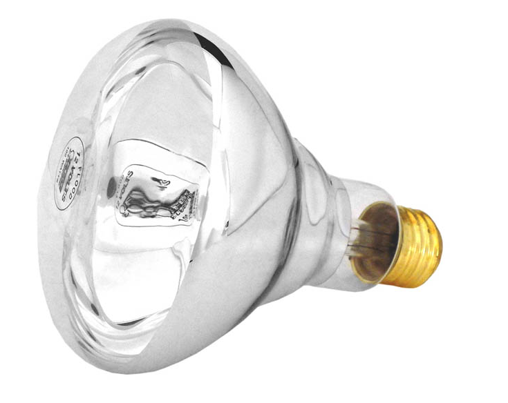 Super-Pro Light Bulb 100W 12V - BR30CL100