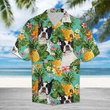 BOSTON TERR HAWAII BEACH SHIRT