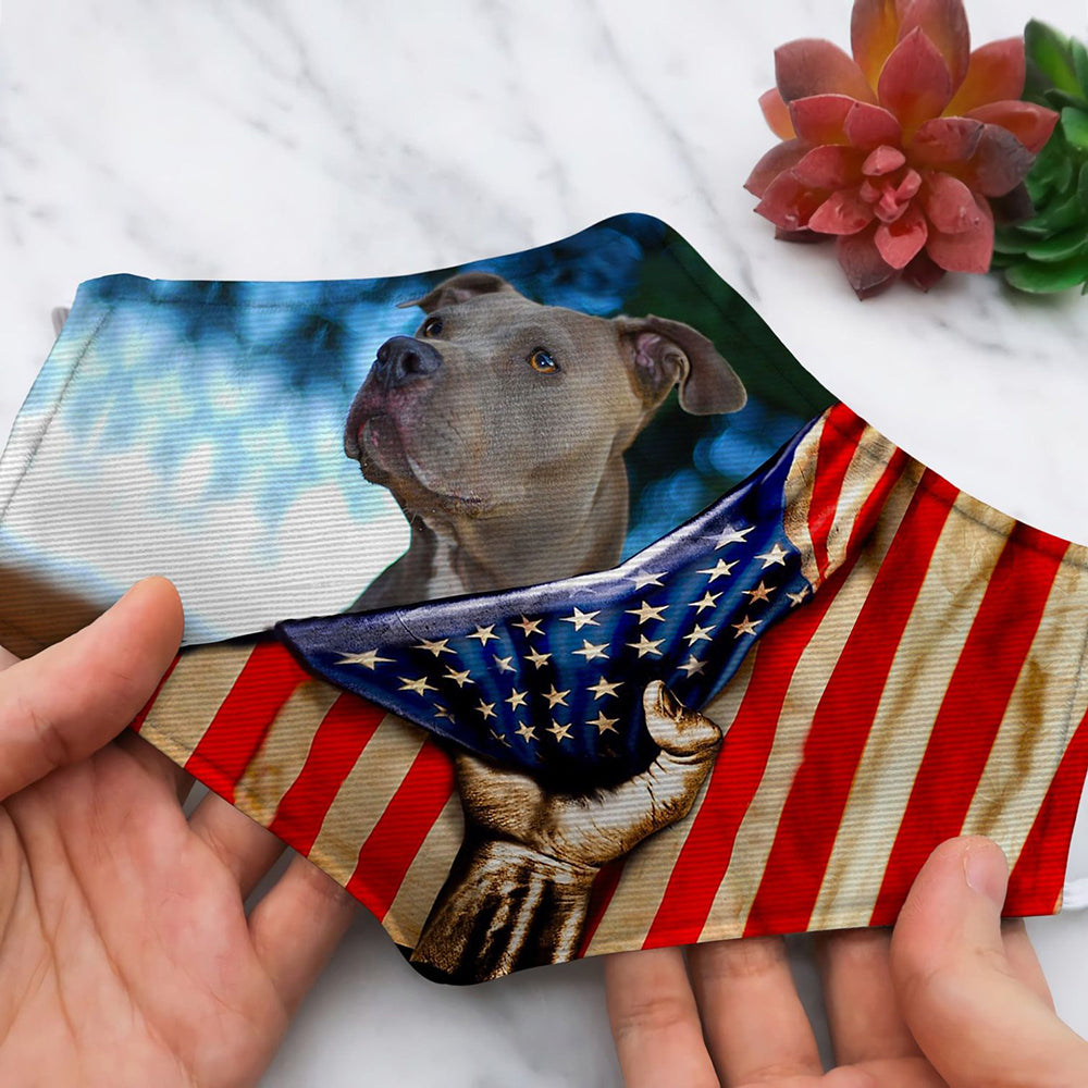 PITBULL FORM AMERICAN FLAG VINTAGE HP104
