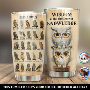 Wisdom Meaning Owl Tumbler