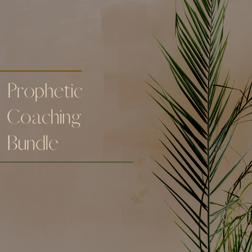 Prophetic Coaching Bundle