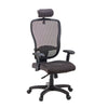 Canice Hi-Back MATREX Usa Patent Mesh Chair