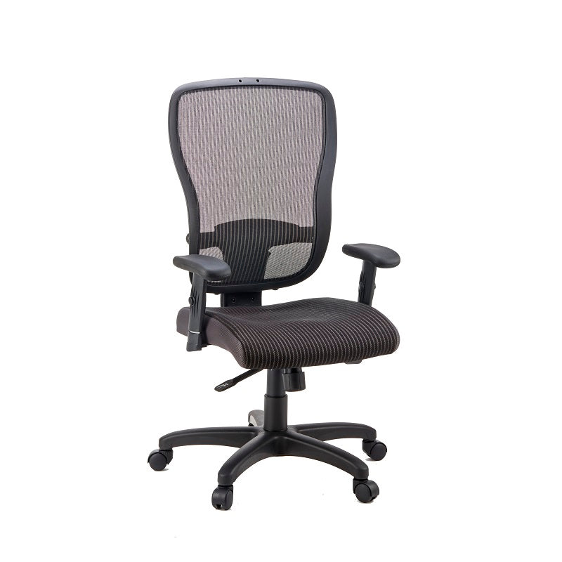 Canice Mid-Back MATREX Usa Patent Mesh Back Fabric Seat Chair