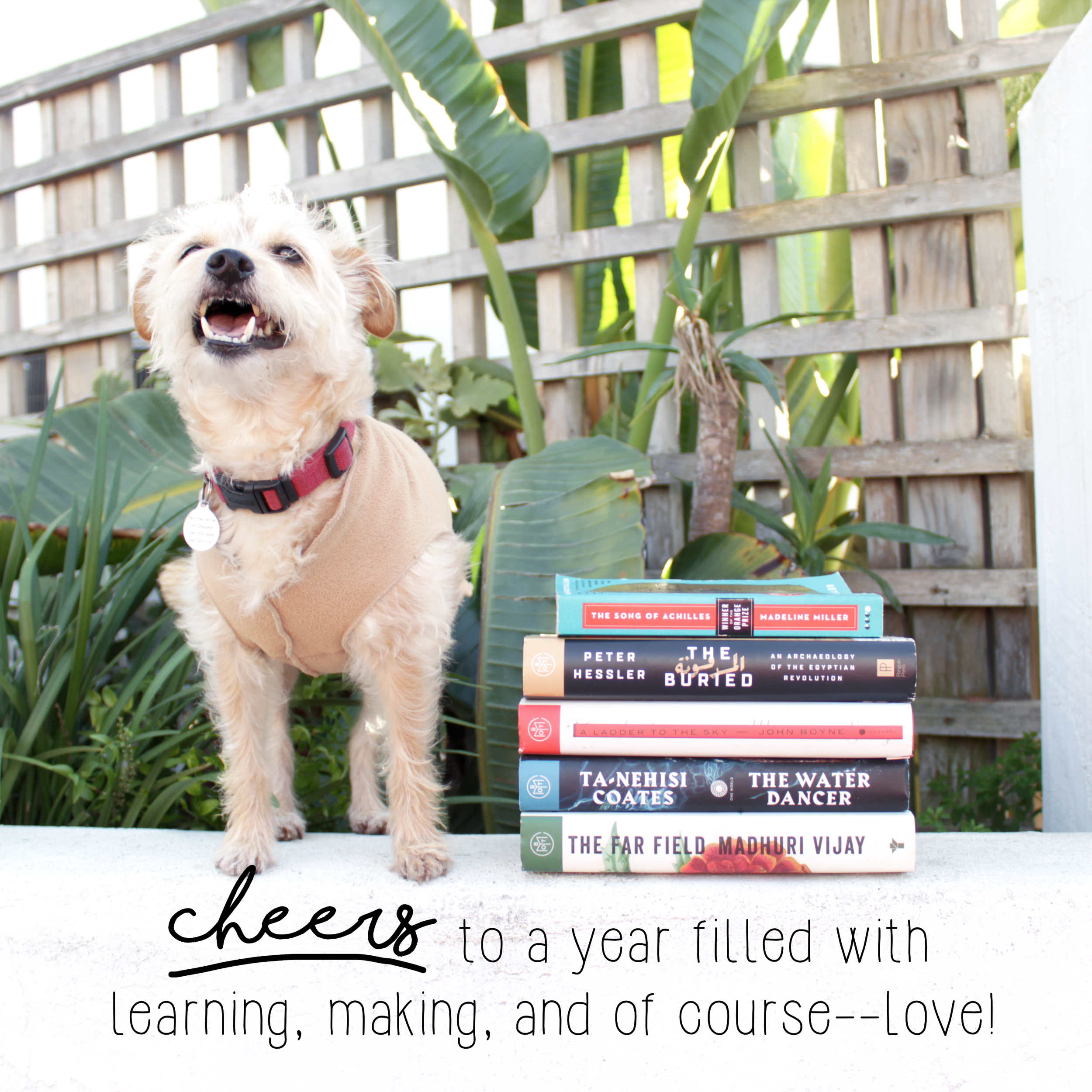 Favorite Sewing Projects & Reads Of The Year: Cheers!