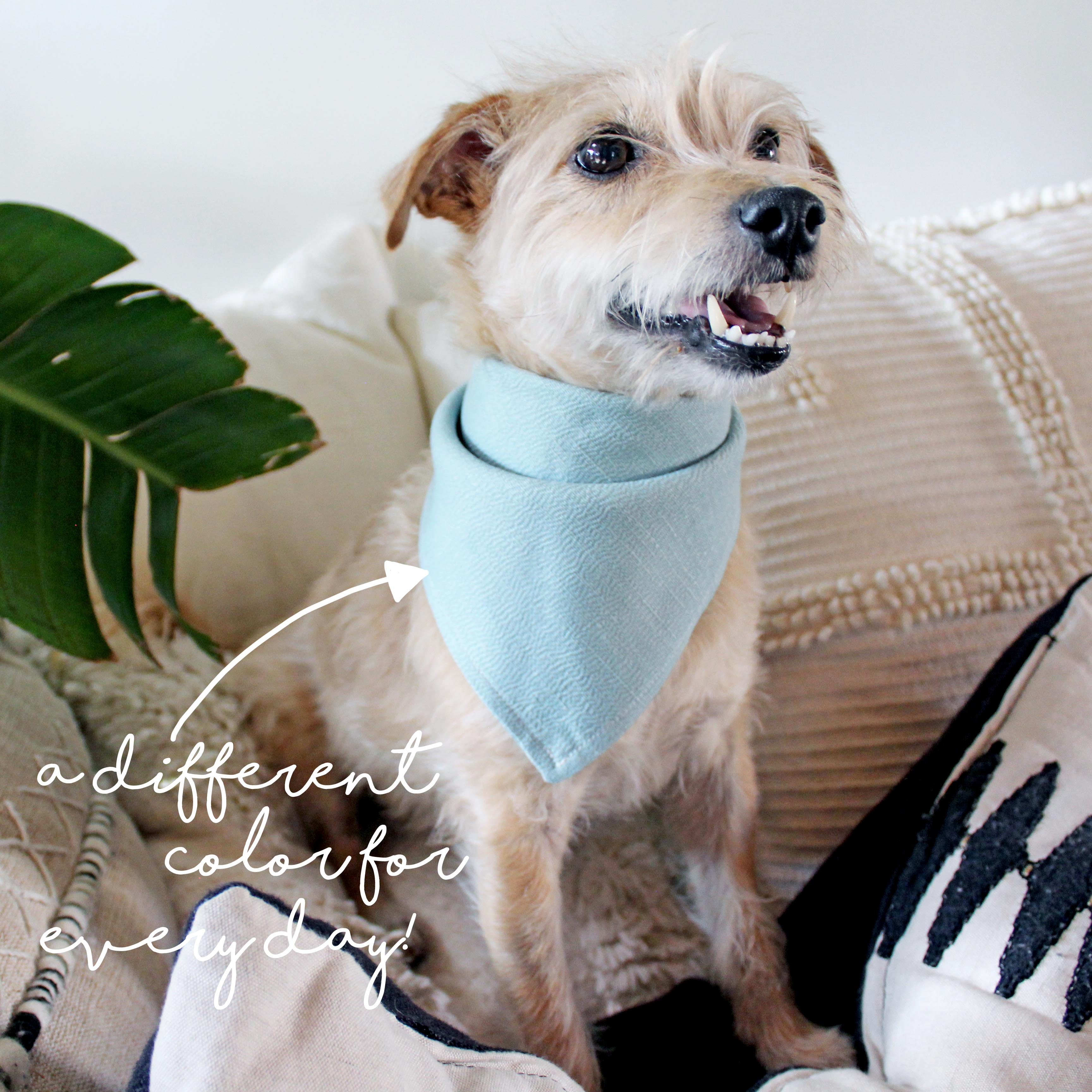 How To Sew An Easy Pet Bandana Color Options