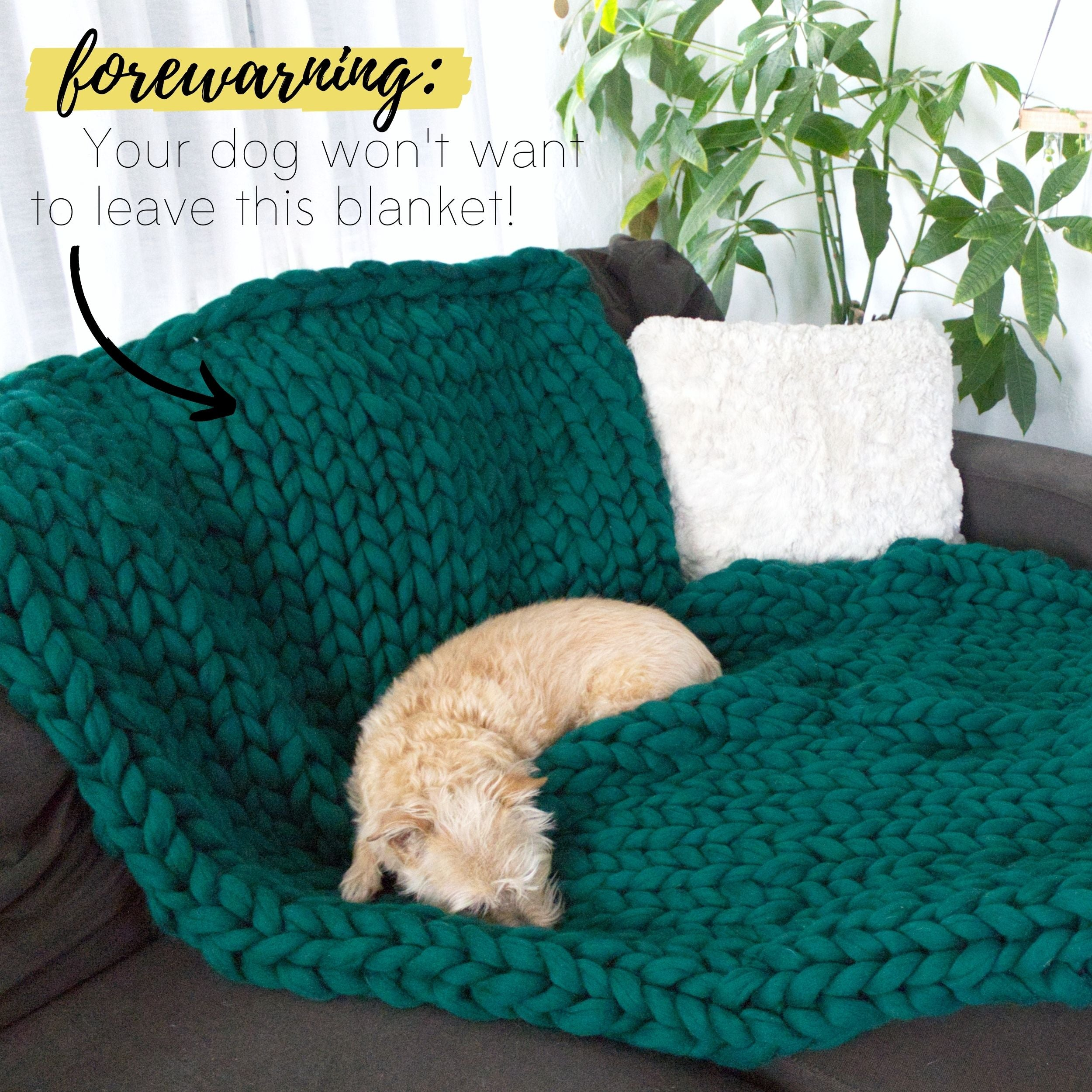 Your dog won't want to leave this DIY chunky knit blanket!