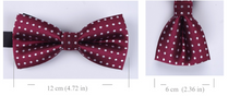 Load image into Gallery viewer, Wedding Bow Tie