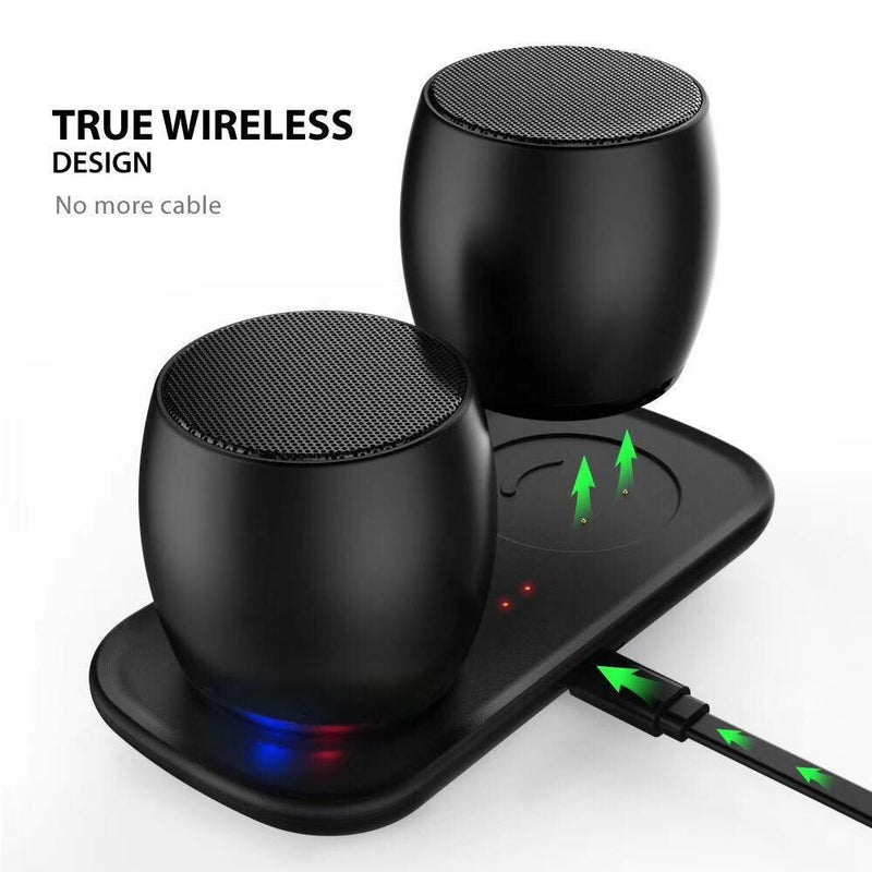 Sardine F1 True Wireless Speakers