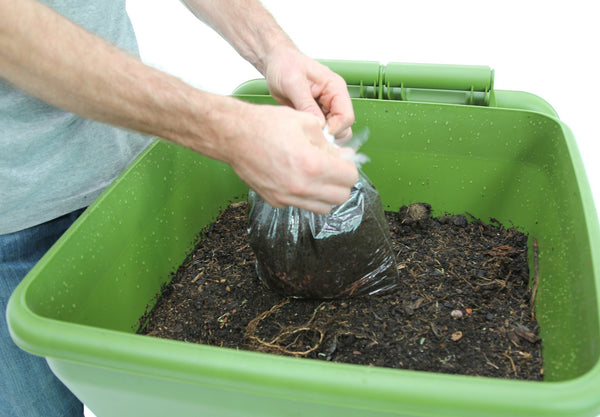 adding compost worms to bin