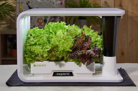 https://www.sproutrite.com/collections/aspara/products/aspara-16-hole-smart-hydroponic-grower