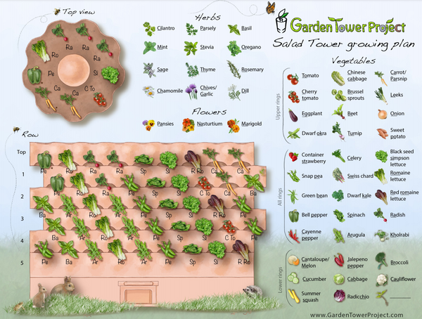 Salad Tower Layout