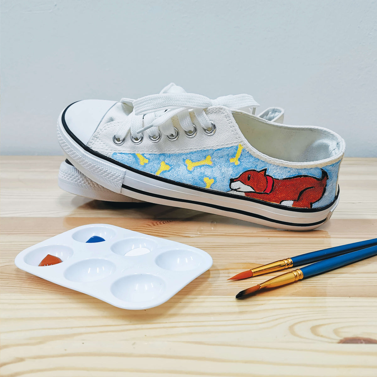 DIY Basic Sneaker Painting Kit