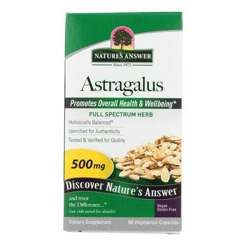 Nature's Answer - Astragalus Root - 90 Vegetarian Capsules