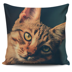 Pillow Cover  Ginger Cat Painted