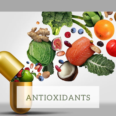 Antioxidants in your dogs diet