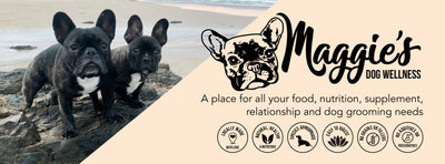 Welcome to Maggie's Dog Wellness!