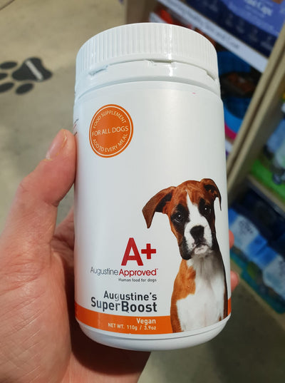 Supplements for Vegan Dogs?
