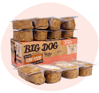 Big Dog Salmon 3kg - Maggies Dog Wellness