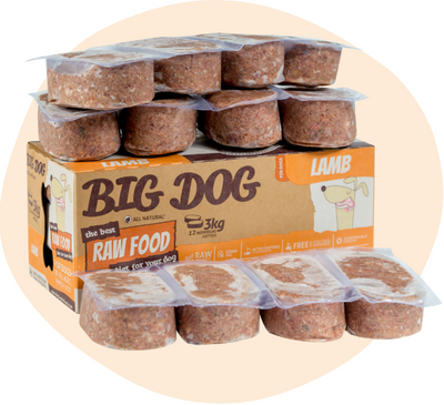 Big Dog Lamb 3kg - Maggies Dog Wellness