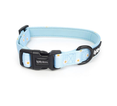 Holly & Co Oopsie Daisy Collar - Maggies Dog Wellness
