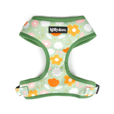 Holly & Co Flower Power Harness - Maggies Dog Wellness