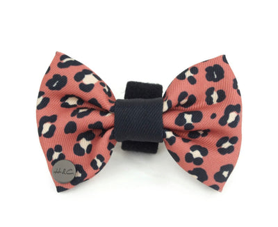 Holly & Co Wilder Dog Bow - Maggies Dog Wellness