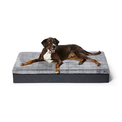 The Big Dog Orthopaedic Dog Bed - Maggies Dog Wellness