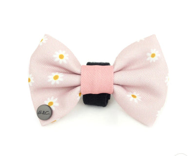 Holly & Co Daisy Dog Bow - Maggies Dog Wellness